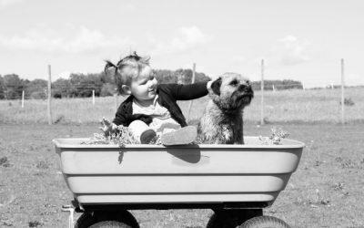 Välj rätt, den ultimata barnvagnsguiden