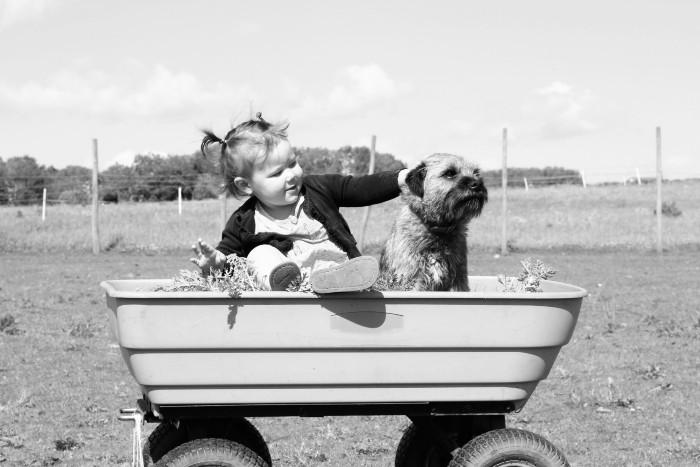 barnvagnsguide